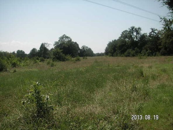 40 Acres M/L, Clarksville, AR 72830 Photo 10