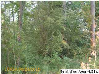 515 Creek Ridge Dr., Riverside, AL 35135 Photo 1