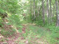 Home for sale: 0 Cabe Rd., Sylva, NC 28779