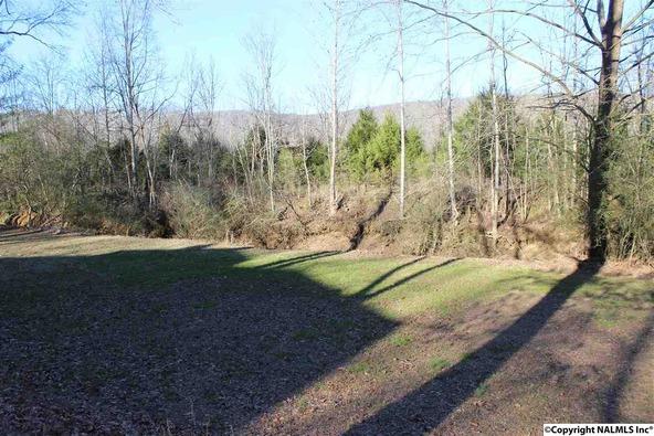 4807 Cove Creek Dr., Brownsboro, AL 35741 Photo 2