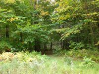 Home for sale: 336 Mallard Ln., Bushkill, PA 18324