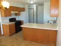 Home for sale: 804 Covey Ln., Coal City, IL 60416