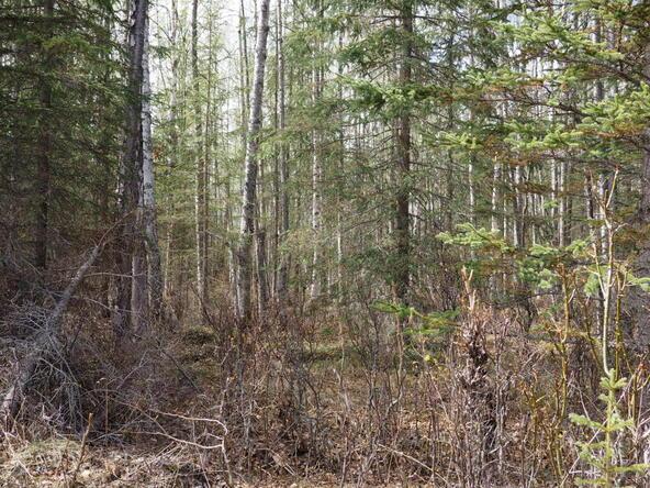 10274 S. Ridge Rd., Wasilla, AK 99654 Photo 8