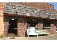 Home for sale: 502 N. Main St., Saint Elmo, IL 62458