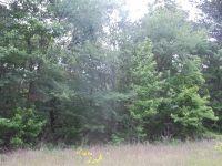 Home for sale: Tbd #2 Joy Ln., Hallsville, TX 75650