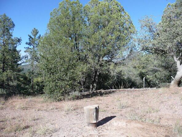 8b N. Chamberlain Trail, Young, AZ 85554 Photo 17