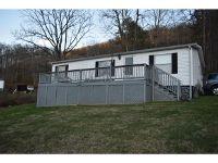 Home for sale: 806 Buffalo Ridge, Big Stone Gap, VA 24219