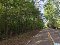 Home for sale: 0 Hwy. 23, Ashville, AL 35953