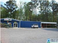 Home for sale: 34180 Hwy. 280, Childersburg, AL 35044