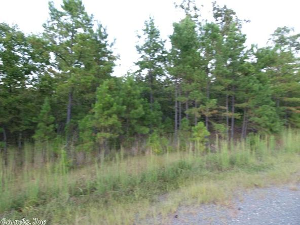 2011 Berry Mountain Cove, Paron, AR 72202 Photo 2
