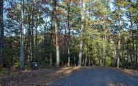 Home for sale: Lt 13 Brasstown Trails, Warne, NC 28909