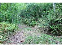 Home for sale: 0 Galunlati Rd., Bryson City, NC 28713