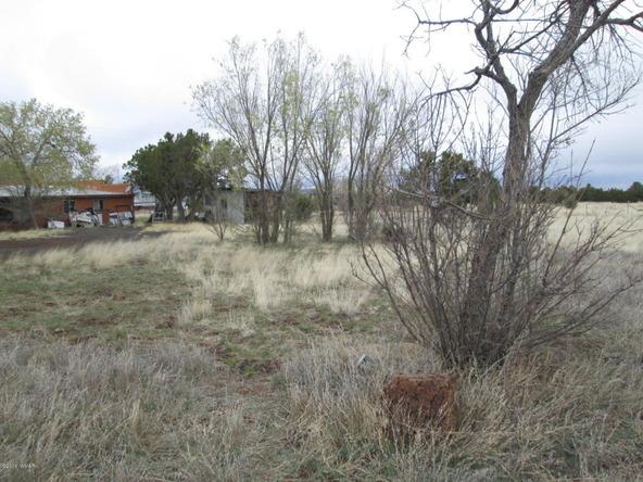 1593 Cr 3140, Vernon, AZ 85940 Photo 16