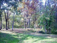 Home for sale: Brock Ct., Carlinville, IL 62626