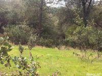 Home for sale: 0 Gold Creek Ln., Diamond Springs, CA 95619