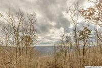 Home for sale: 5 South Bluff Trail, Huntsville, AL 35803