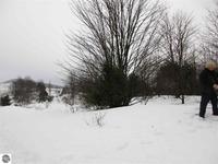 Home for sale: E. Meander Ln., Cedar, MI 49621