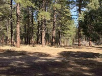 Home for sale: State Rd. 512, Chama, NM 87520