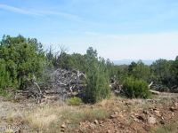 Home for sale: Lot 656 Edge Ridge Rd., Seligman, AZ 86337