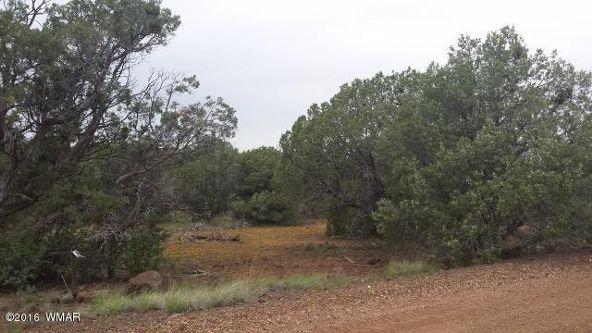 8273 Ridge Dr., Show Low, AZ 85901 Photo 11
