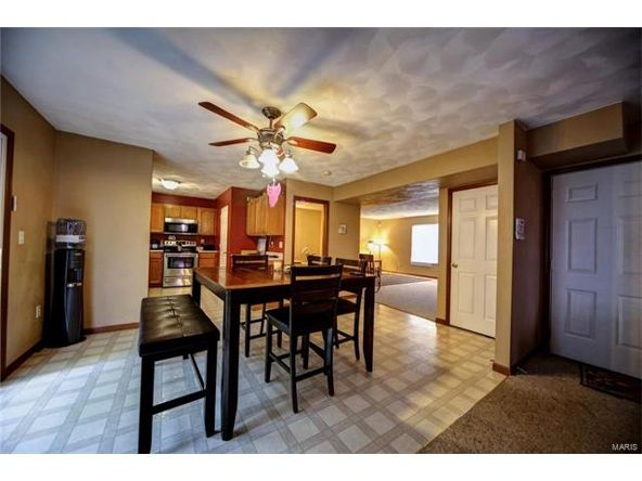 804 Country Meadow Ln., Belleville, IL 62221 Photo 13