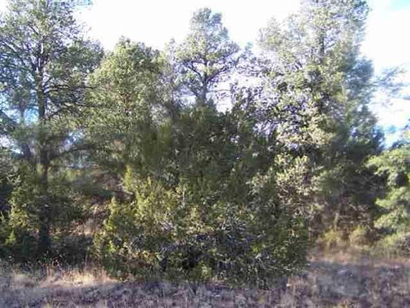 3356 Apache Dr., Overgaard, AZ 85933 Photo 5
