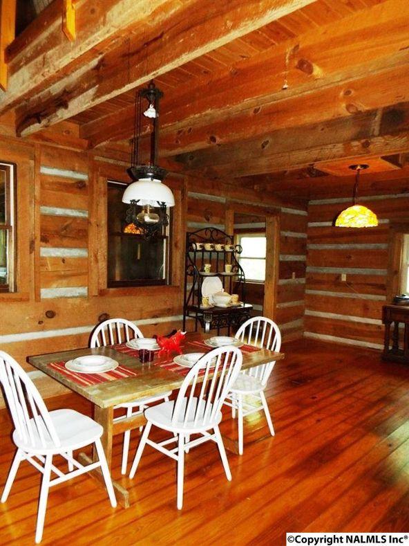 984 County Rd. 613, Mentone, AL 35984 Photo 11