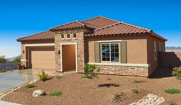 38976 S. Easy Gallop Drive, Tucson, AZ 85739 Photo 1