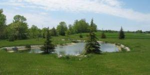 Lt4 Danmar Acres, Whitelaw, WI 54247 Photo 2