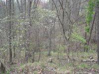 Home for sale: Lot 30 Old Trail, Johnsons Mtn., Huntington, WV 25704