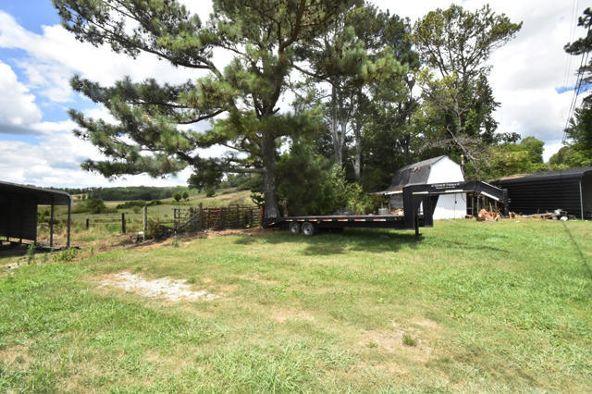 31159 Alabama Hwy. 71 Hwy, Bryant, AL 35958 Photo 40
