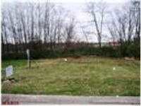 Home for sale: 3922 Max Weich Pl., Saint Louis, MO 63136