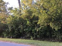 Home for sale: Coon Rd., Astor, FL 32102