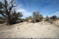 Home for sale: 6408 Castle Pl., Farmington, NM 87402