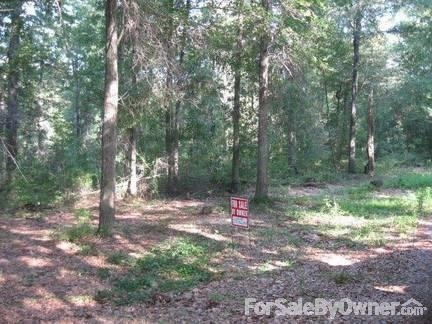 6900 Magnolia Springs Estate, Mobile, AL 36618 Photo 7