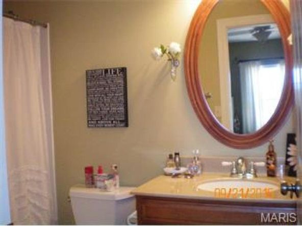 13 Orchard Point, Hannibal, MO 63401 Photo 30