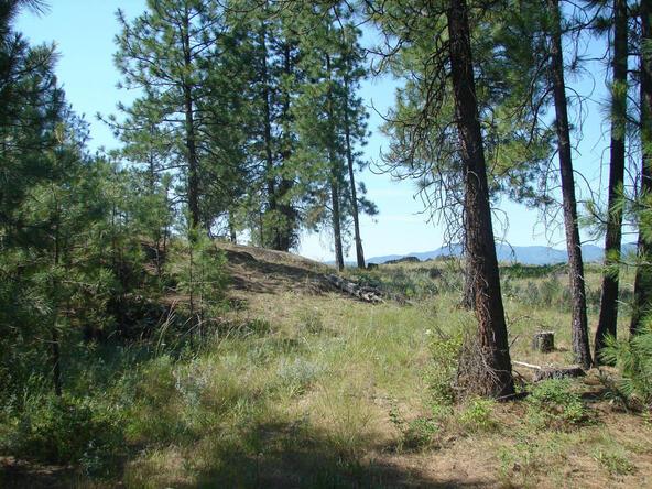740 C Arden Butte Rd., Colville, WA 99114 Photo 15