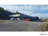 Home for sale: 1400 Alabama Hwy. 69 South, Hanceville, AL 35077