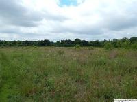 Home for sale: Pleasant Hill Rd., Guntersville, AL 35976