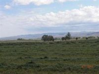 Home for sale: 30 Ac Maybon Ln., Homedale, ID 83628
