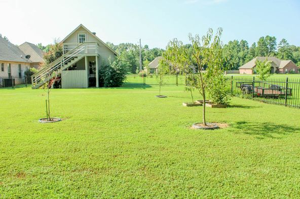 44 Pl. Ln., Greenbrier, AR 72058 Photo 69