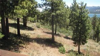 Home for sale: 979 Deer Trail Ln., Fawnskin, CA 92333
