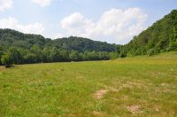 Home for sale: 77 Ac Parker Rd., Byrdstown, TN 38549
