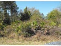 Home for sale: 0 County Rd. 248c, Lake Panasoffkee, FL 33538