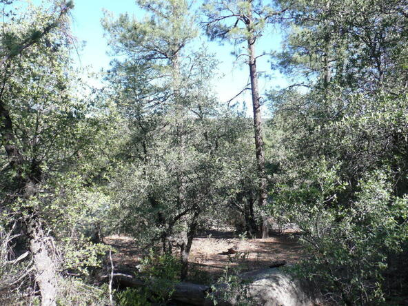 200 E. Cline Crossing, Young, AZ 85554 Photo 66
