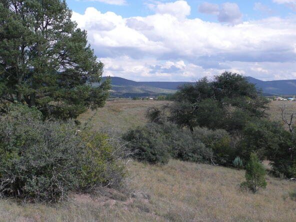 290 N. Navajo Trail, Young, AZ 85554 Photo 5
