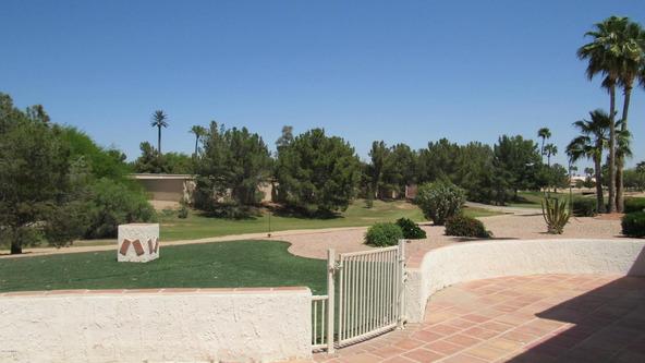 14006 W. Parada Dr., Sun City West, AZ 85375 Photo 25
