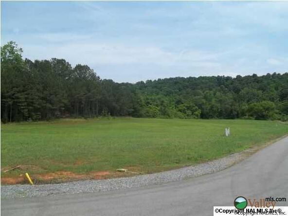 6 Carlton Rd., Scottsboro, AL 35769 Photo 8