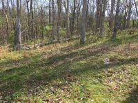 Home for sale: 105 Wild Turkey Path, Georgetown, KY 40324
