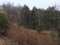 Home for sale: Fox Hollow Lot 7 Rd., Branson West, MO 65737
